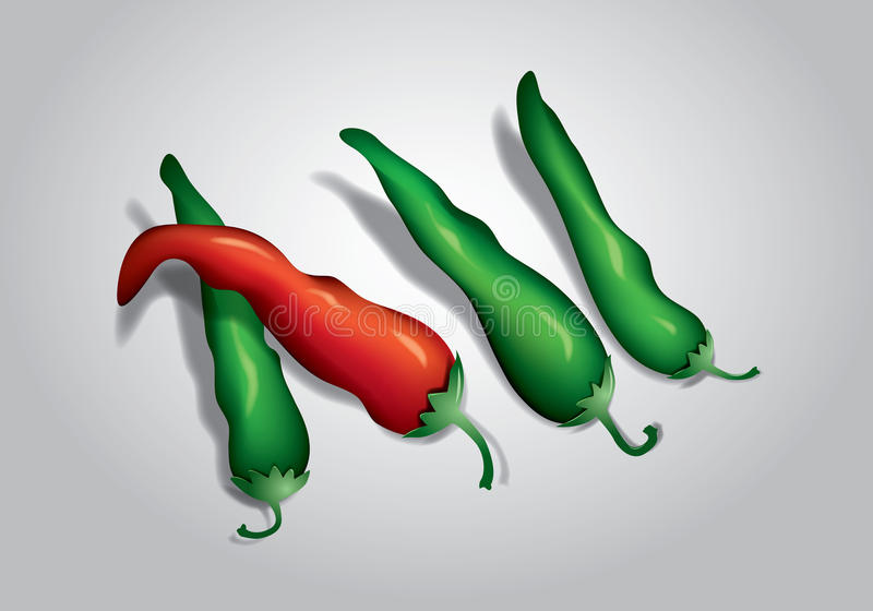 Red and green chili peppers royalty free illustration