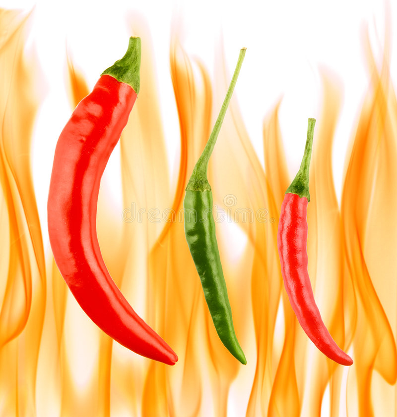 Red and green chilli peppers stock photos