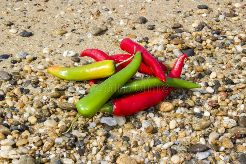 Pile hot peppers stock photography