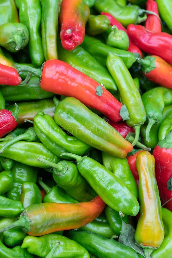 Red and green hot chili peppers. Farmers` market: red and green chili peppers stock photos