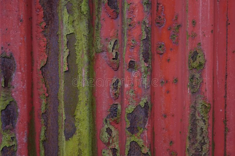 Red, Green, Wall, Wood royalty free stock photography