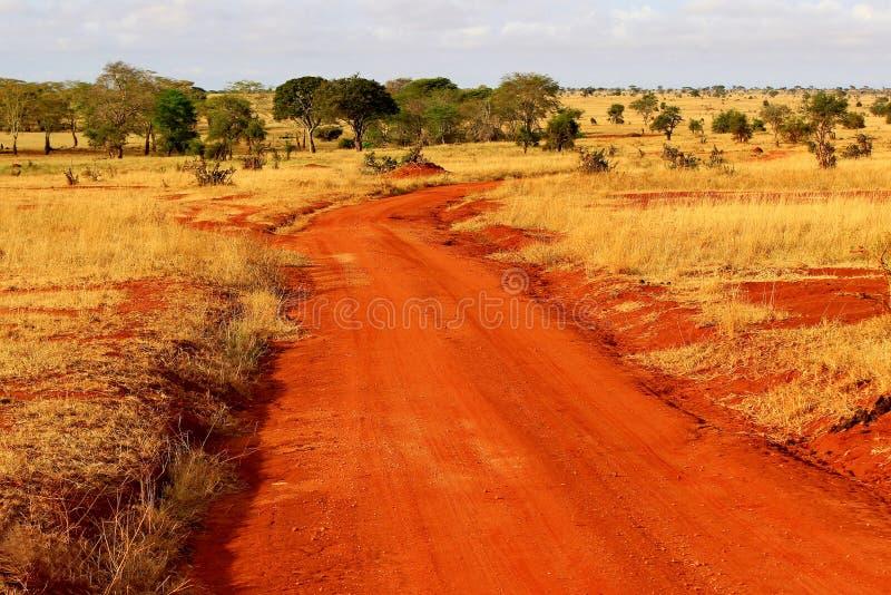 Red ground dusty safari road. In Tsavo Park, Kenya stock photography