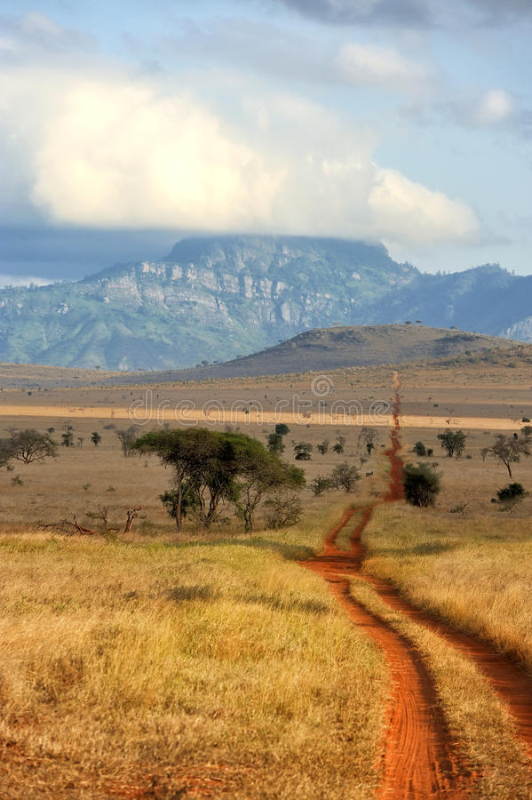 Red ground road and bush with savanna landscape in Africa stock photos
