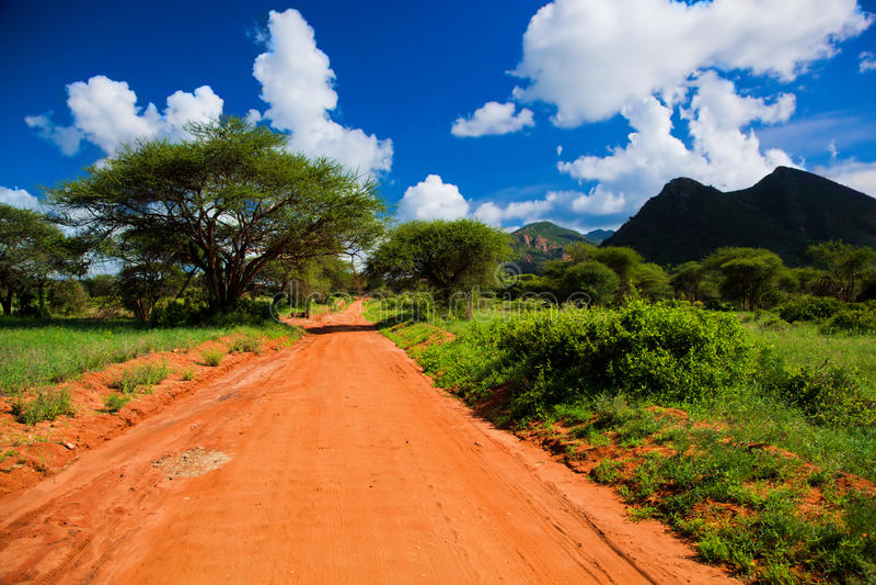 Red ground road, bush with savanna. Tsavo West, Kenya, Africa stock images