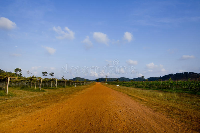 Red ground road stock images