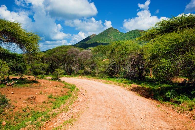 Red ground road and savanna. Tsavo West, Kenya, Africa royalty free stock image
