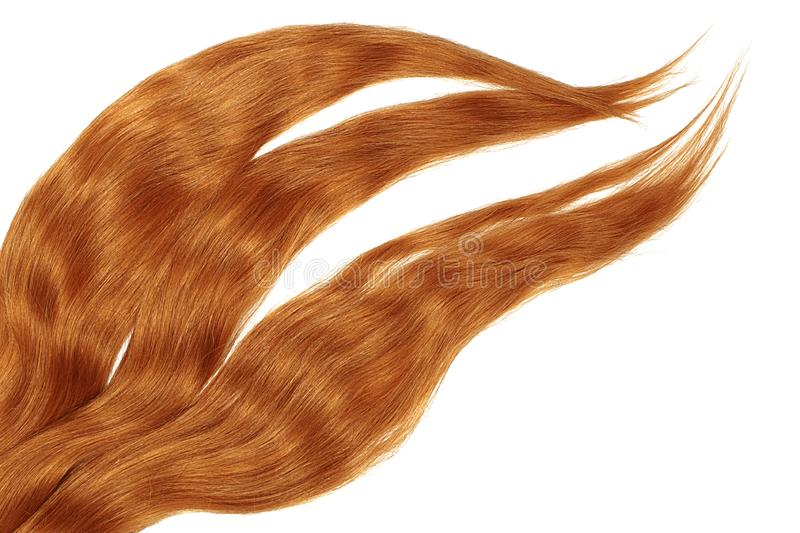 Red hair isolated on white background. Long disheveled ponytail. Natural healthy hair isolated on white background. Detailed clipart for your collages and stock image