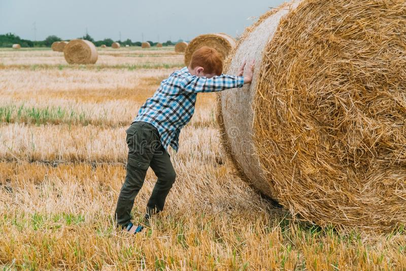 Red-haired boy pushing a bale of straw in the middle of a wheat field with bales on a summer evening stock image