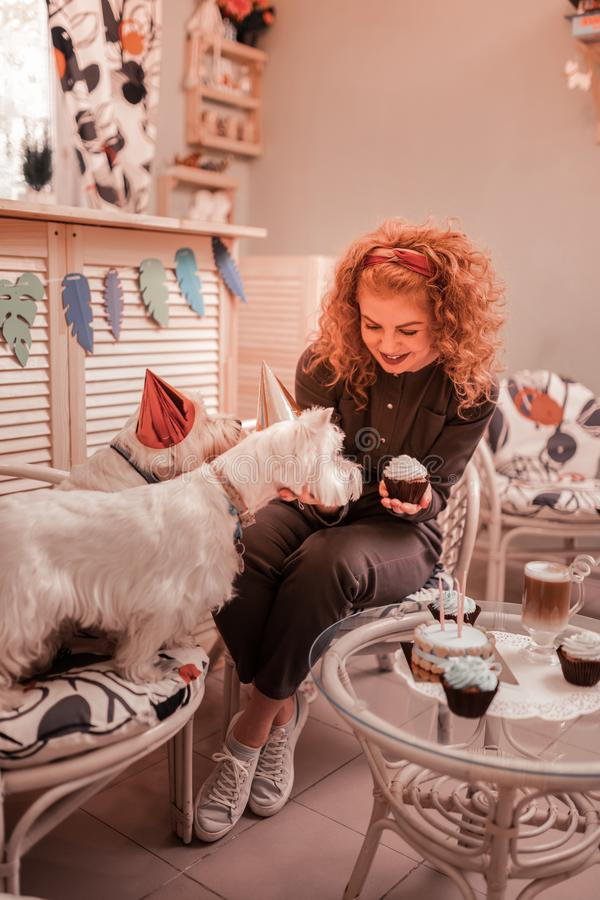 Red-haired curly woman celebrating birthday of her dogs royalty free stock image