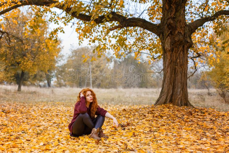 Red-haired girl in the autumn forest sitting on yellow leaves stock images