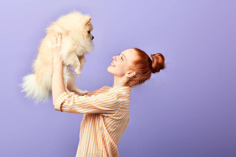 Red-haired woman holding a nice fluffy breed dog over her head stock photos