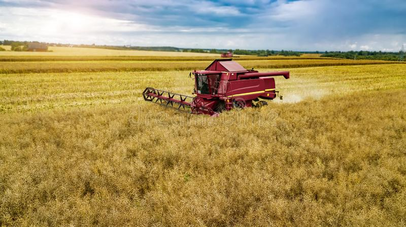 Red harvester in the field reaping rye. Red harvester in the field reaping rye royalty free stock photography