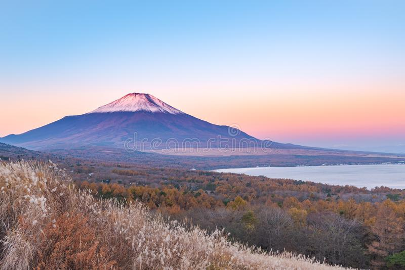 Red Head Beni Fuji at Lake Yamanaka during the sunrise view fr. Om Panorama-Dam, Yamanashi in Japan stock image