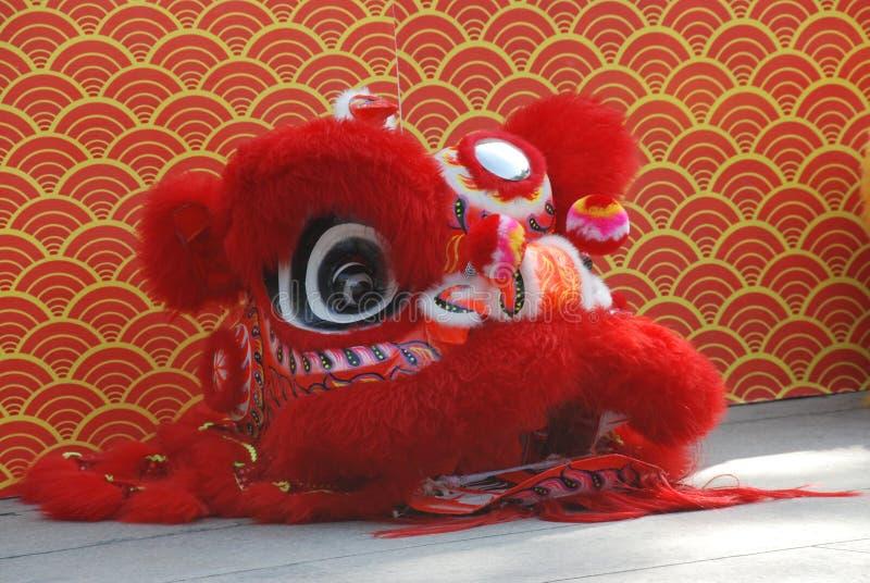 Lion Dance Costume royalty free stock photo
