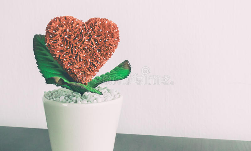 Red heart flower plant in ceramic pot. With copy space royalty free stock photo