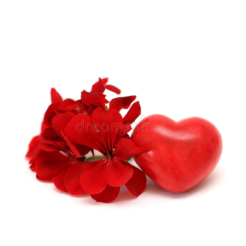Red heart and flowers - love concept stock photography