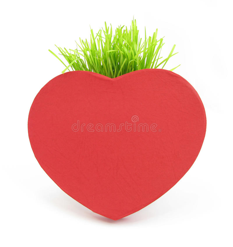 Download Red heart with grass stalk stock image. Image of heart - 10681369