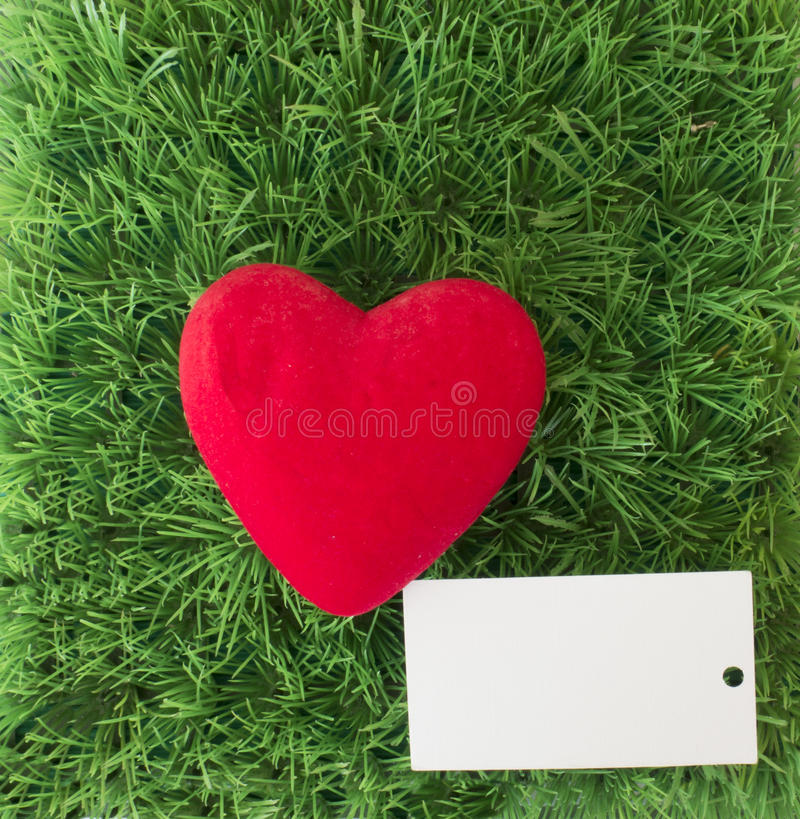 Red heart on green grass with card for text. Background for Valentine`s day on the green grass with red heart stock image