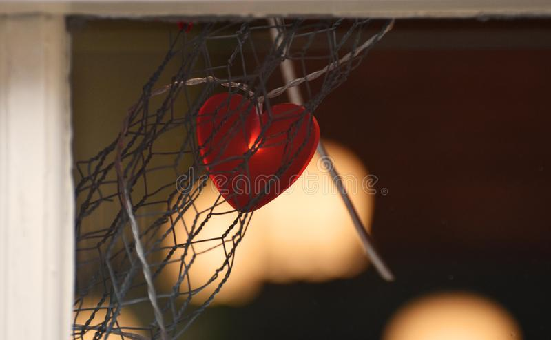 Valentines Light Decoration. A red heart light decorations in a shop window in the lead up to Valentine`s Day 2019 royalty free stock images