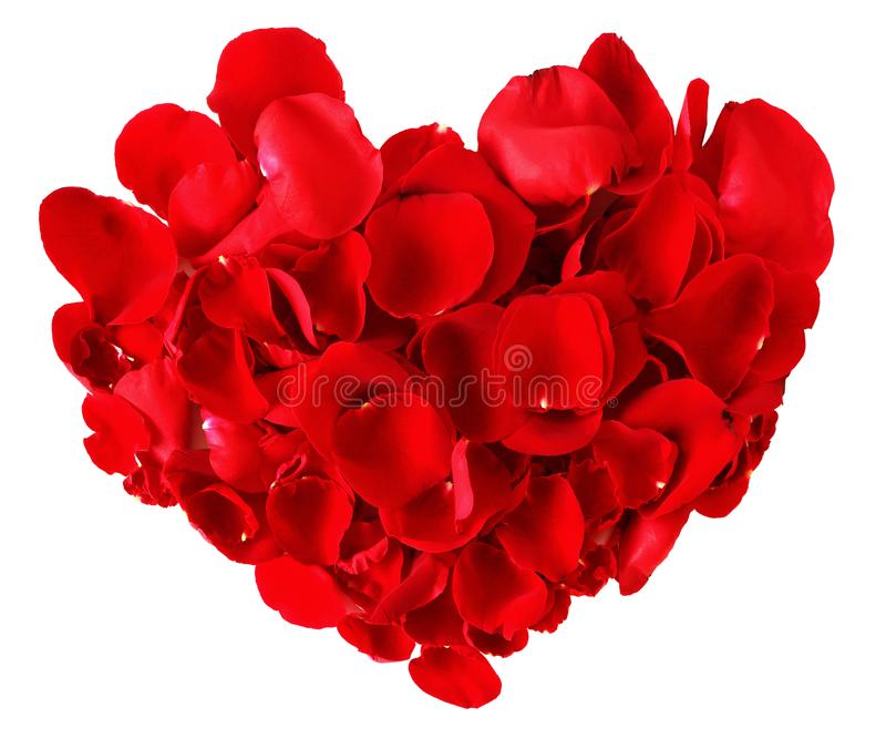 Red heart made from rose petals isolated on white background royalty free stock images