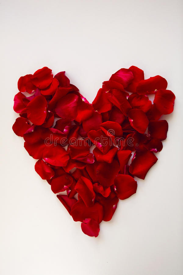 Red heart made of rose petals royalty free stock photos