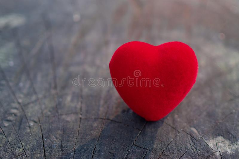 The red heart is placed on the wooden floor and have copy space for design in your work. The red heart represents the day of love. The red heart is placed on stock photography