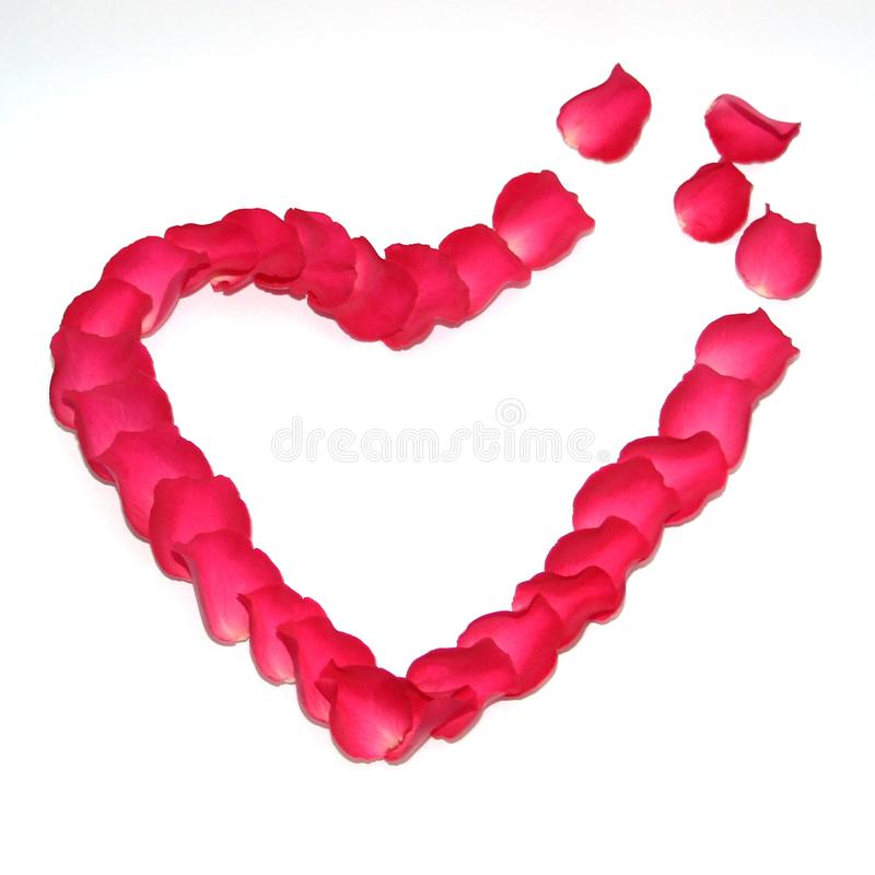 The symbol of love is laid out of roses in the shape of a heart. Red heart of rose petals. The symbol of love is laid out of roses in the shape of a heart royalty free stock image