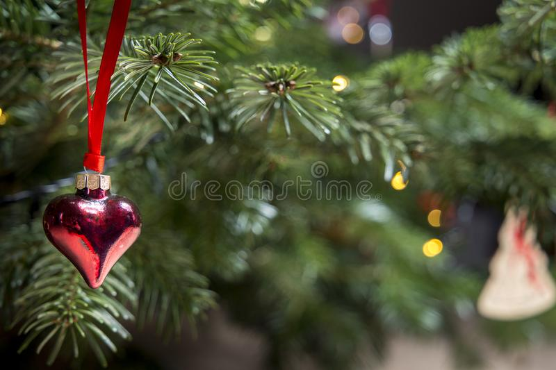 Red Heart Shaped Tree Stock Images
