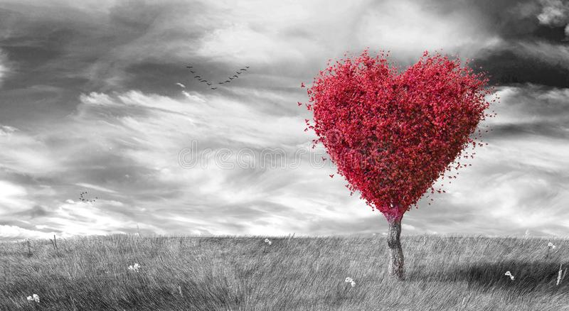 Red heart shaped tree on black & white landscaped background royalty free stock images