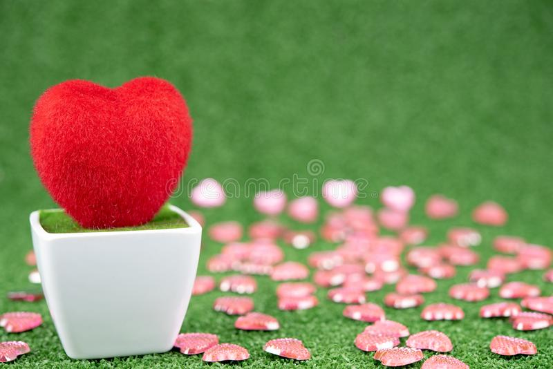 Red Heart-shaped tree. Close up  on green fresh grass , valentines day background royalty free stock images