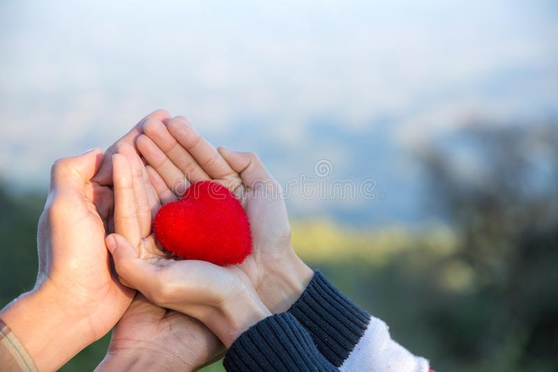 Red heart in woman and man hands, hands holding a soft heart shape, Couple love, Valentine`s Day royalty free stock images