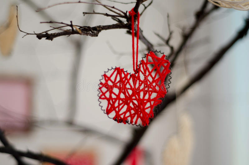 Red hearts closeup on tree branch. Happy holidays celebration day concept of Valentine`s love heart royalty free stock photos