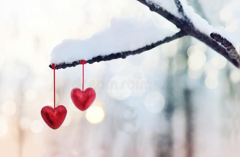 Red hearts on snowy tree branch in winter. Holidays happy valentines day celebration heart love concept. stock images