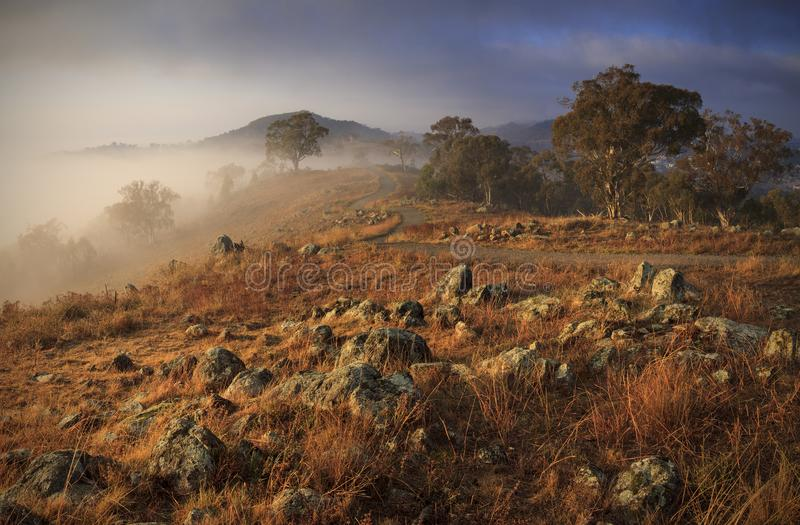 Red Hill walk Canberra stock photos