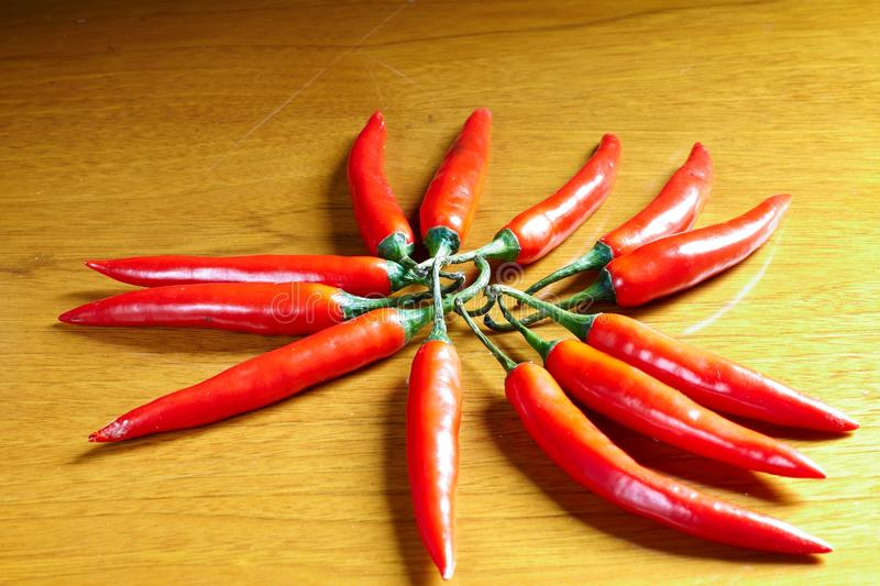 Red hot chili. On wooden background royalty free stock image