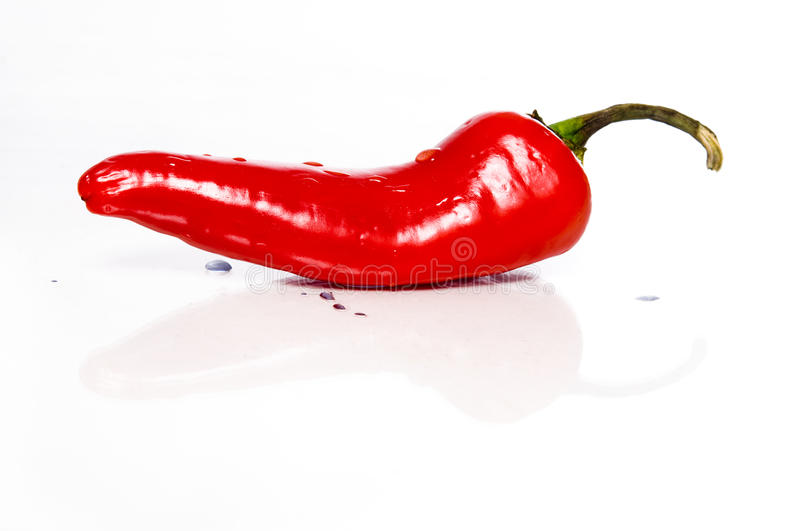 The red hot chili pepper royalty free stock photography