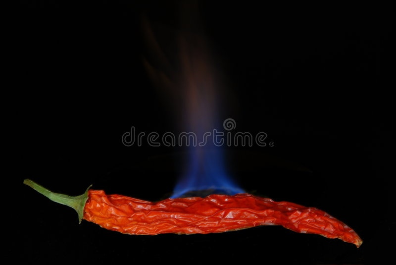 Red hot chili pepper 2 stock photography