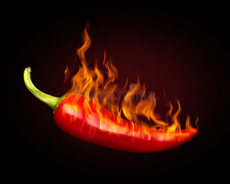 Red hot chili pepper. On black background with flame stock photography