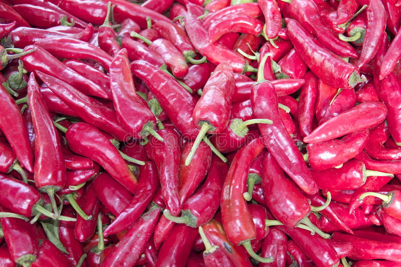 Red Hot Chili Pepper stock photo