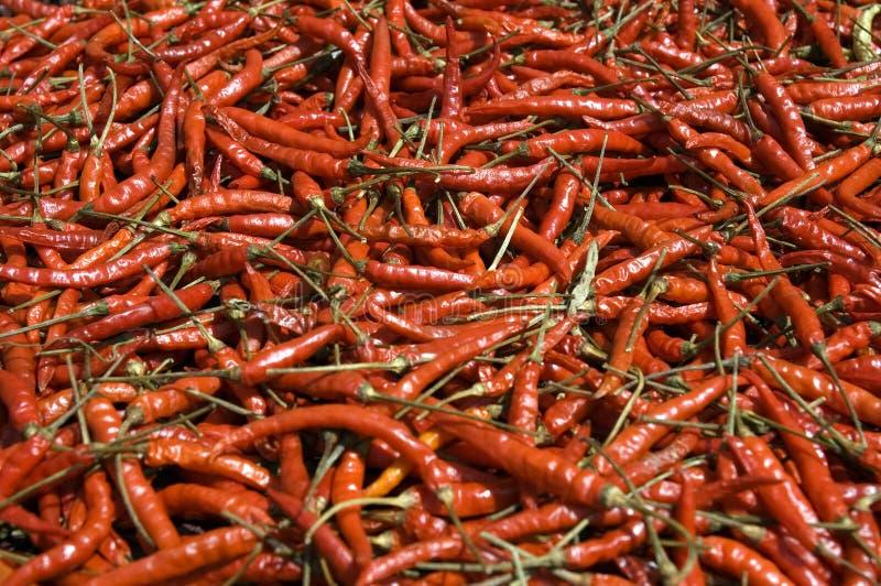 Red Hot Chili Peppers fotos de archivo libres de regalías