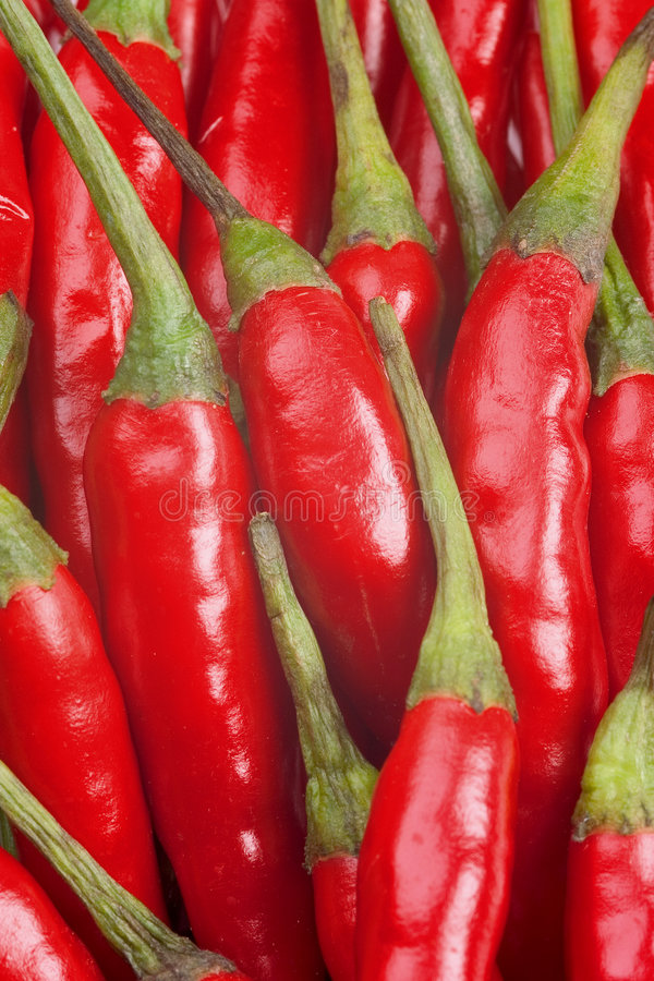 Red-hot chili peppers stock photography