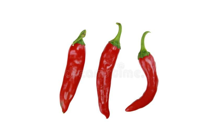Red Hot Chili Peppers aisló en blanco fotografía de archivo