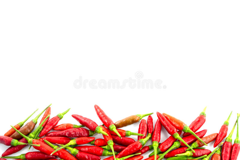 Red hot chili peppers. Border stock photography