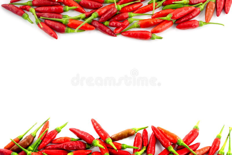 Red hot chili peppers. Border royalty free stock photography