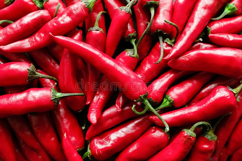 Red hot chili peppers close up royalty free stock photos