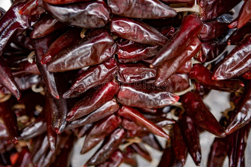 Red hot chili peppers - Espelette. Espelette is known for its dried red peppers, used whole or ground to a hot powder, used in the production of Bayonne ham. The royalty free stock photo