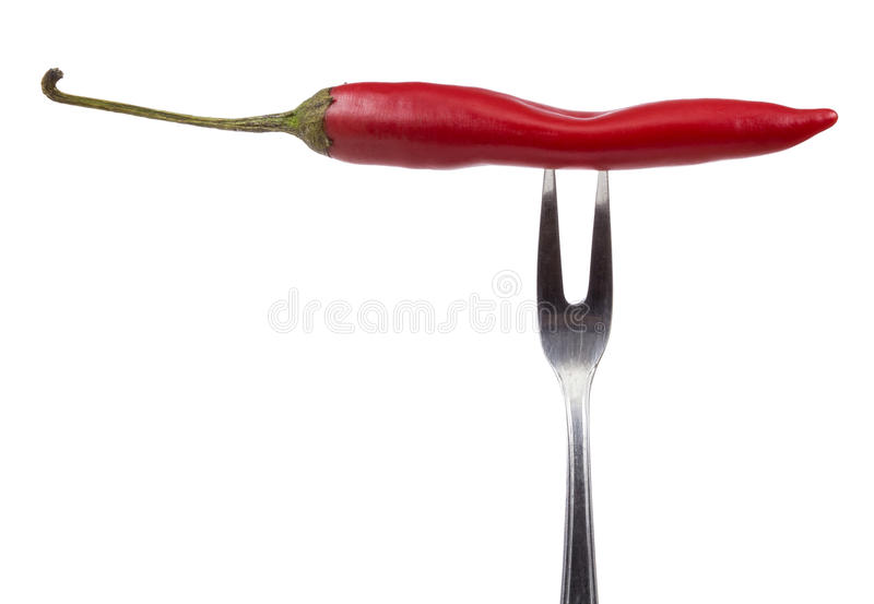 Red hot chili peppers on the fork stock image