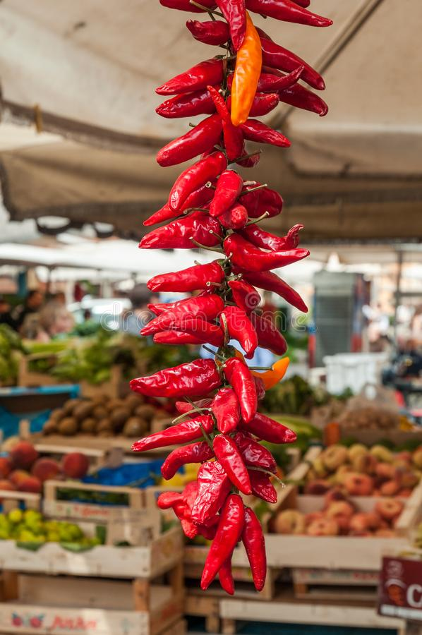 Red hot chili peppers hanging for sale at a day market in Rome stock photos