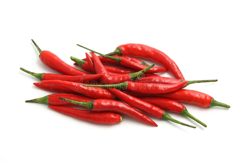 Red hot chili peppers isolated on white background stock images
