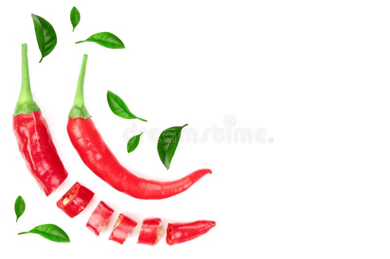 Red hot chili peppers isolated on white background with copy space for your text. Top view. Flat lay pattern.  royalty free illustration